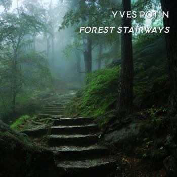 Forest Stairways covers art